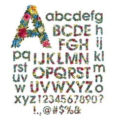 Floral alphabet isolated on vector image
