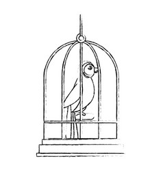 Cute bird in cage mascot vector