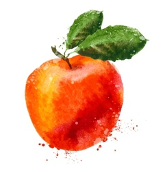 Fruit logo design template peach or apple vector