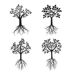 set black trees with roots vector image vector image