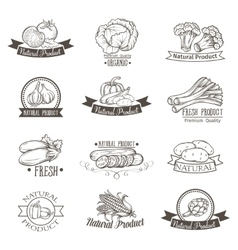 Vintage label with vegetables hand drawn vector