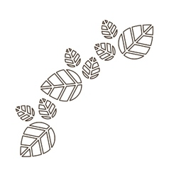 Isolated leaves decoration design vector