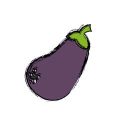 Eggplant vegetable icon vector