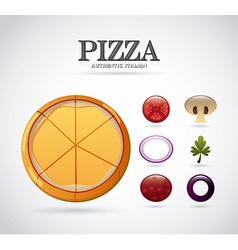 pizza ingredients design vector image