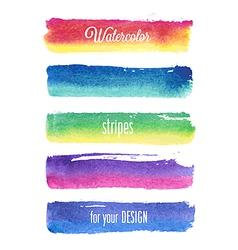 watercolor strokes vector image