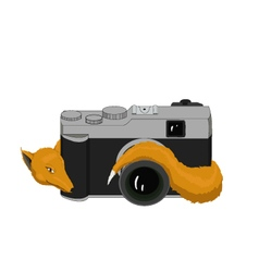 Fox with camera vector