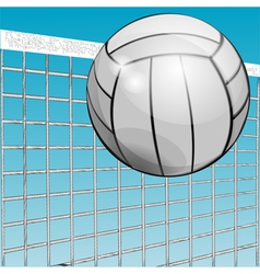 ball and net vector image vector image
