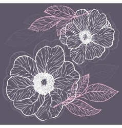Decorative Floral Background with Flowers of Peony vector image vector image