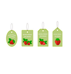 Design labels with juicy ripe strawberry vector