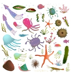 Colorful Sea Life Animals Isolated on White vector image