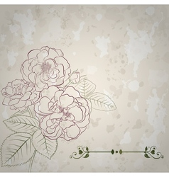 Background with bouquet of roses vector image