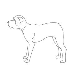 English mastiff line vector