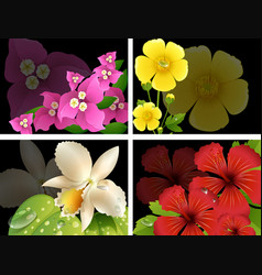 Flowers on black background vector