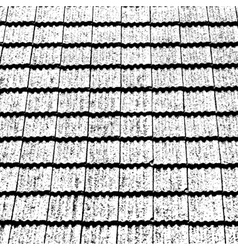 Old Roof Texture vector image vector image