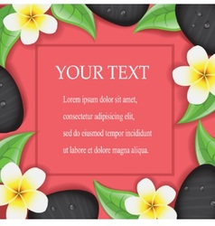 spa frame with flowers and stones vector image