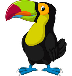 Cartoon happy bird toucan vector