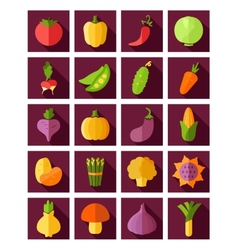 Vegetable flat icon with long shadow vector