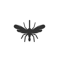 Mosquito icon logo on white background vector