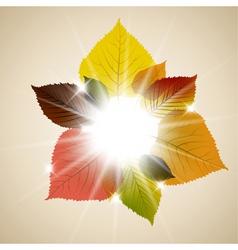 Fall sunny leafs vector