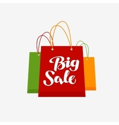 Shopping logo Big Sale symbol or icon vector image
