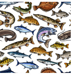 fish sketch seamless pattern vector image