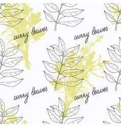 Hand drawn curry leaves branch and handwritten vector