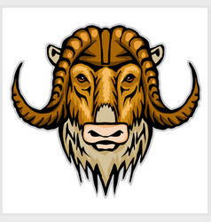 buffalo head emblem isolated on white background vector image vector image