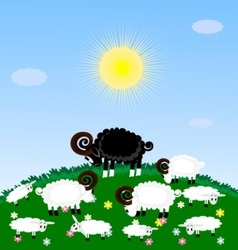 Lonely sheep vector