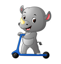 cute rhino riding push scooter vector image vector image