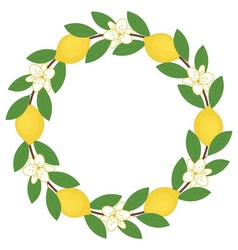 Lemon wreath vector