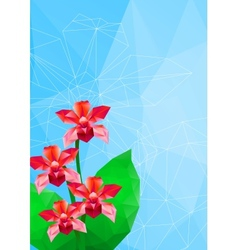 Orchid polygonal style vector