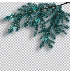 Two blue realistic branch of tree on background vector