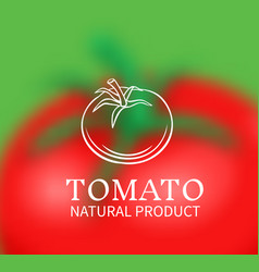 Hand drawn tomato on a blurred background vector
