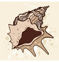 Grange shell hand drawn vector