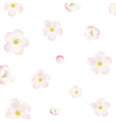 Apple tree flowers background vector