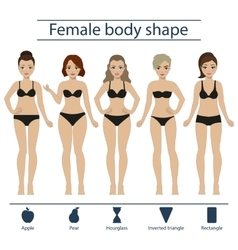 Female body shape set vector