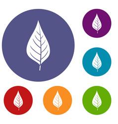 Apple tree leaf icons set vector