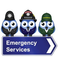 EMERGENCY SERVICES SIGN vector image vector image