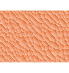 Low poly background vector image vector image