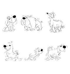 six sketches of dogs vector image
