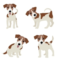 Jack russell terrier of a dog vector