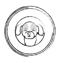 Cute doggy pet icon vector