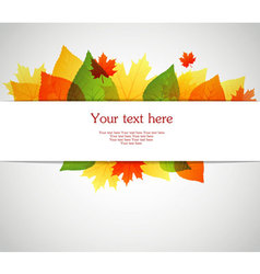 Back autumn leafs vector