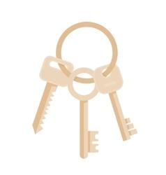Bunch of three keys vector image