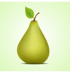 Green pear vector image