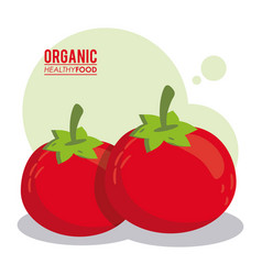 Organic healthy food tomato fresh vector