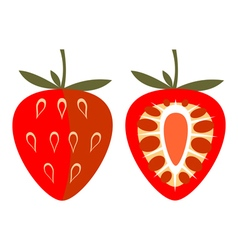 Strawberry whole and half vector