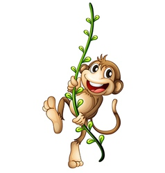 A monkey hanging on a vine vector image vector image