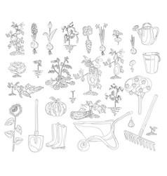gardening set coloring book vector image vector image