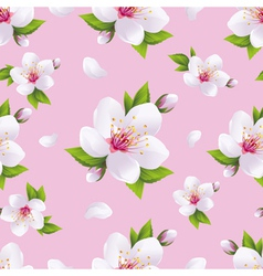 Seasonal background seamless pattern sakura vector image vector image